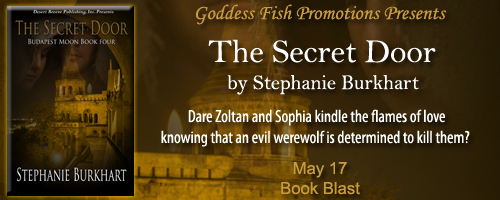 BB_TheSecretDoor_Banner copy