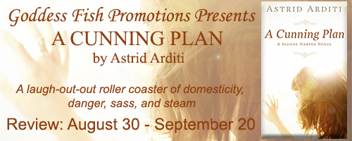 Review_TourBanner_ACunningPlan